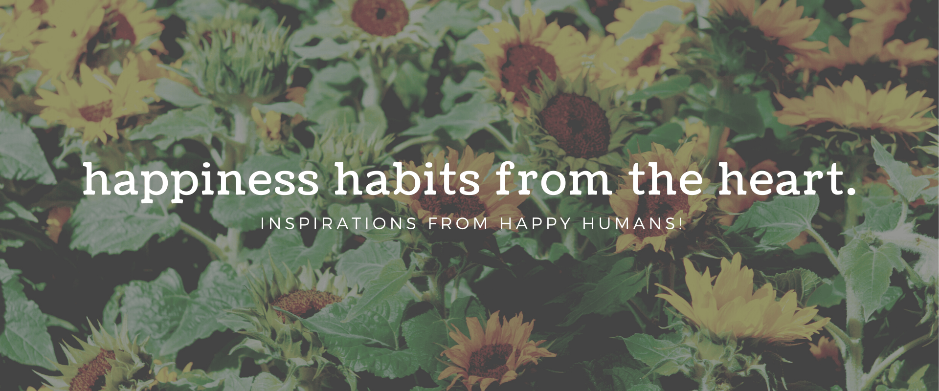 Happiness Habits from the Heart - SOH