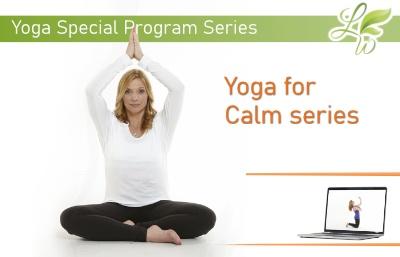 Yoga for Calm Series Program